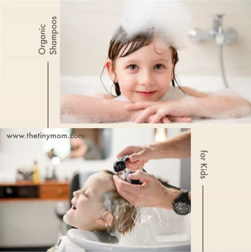 Organic Shampoo for Kids