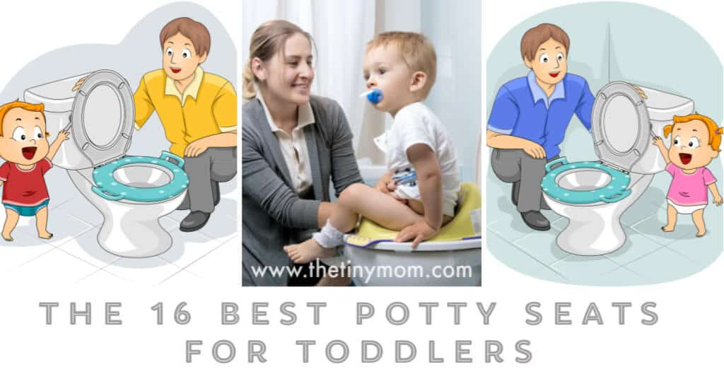Best Potty Seats for Toddlers