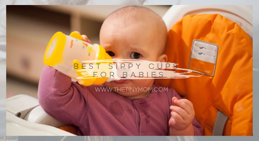 Best Sippy Cups For babies