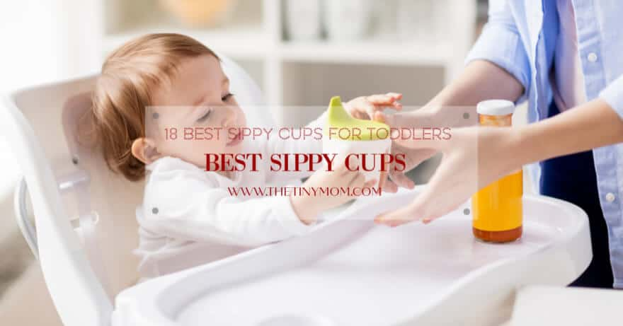 Best Sippy Cups for toddlers