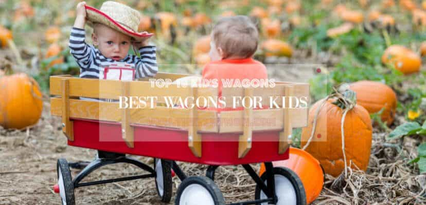 The 18 Best Wagons for Your Kids | Reviews 2019