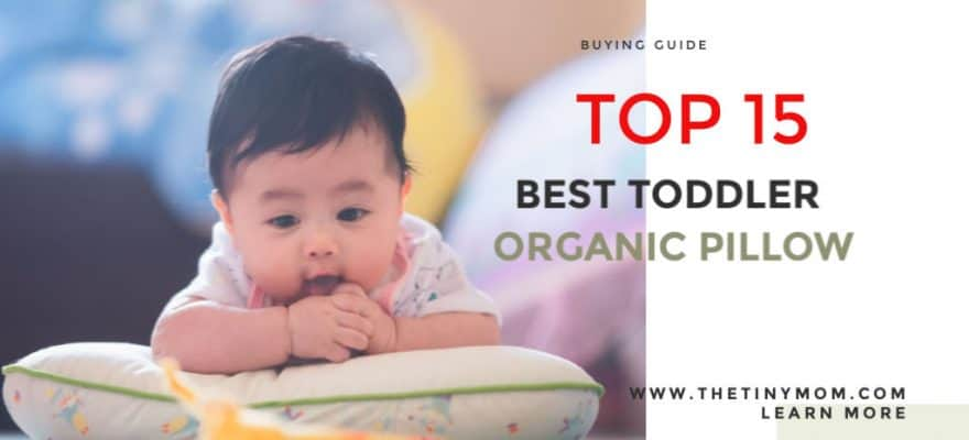 The 15 Best Toddler Organic Pillow 2020 (Product Review & Buying Guide)