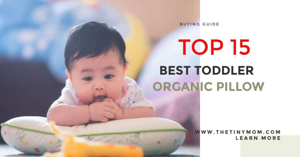 Best Organic Toddler Pillow